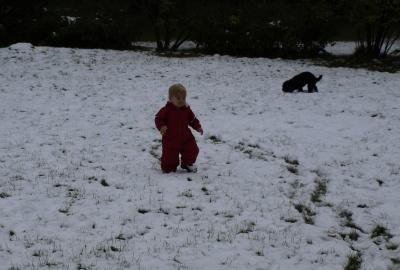 1-Snow